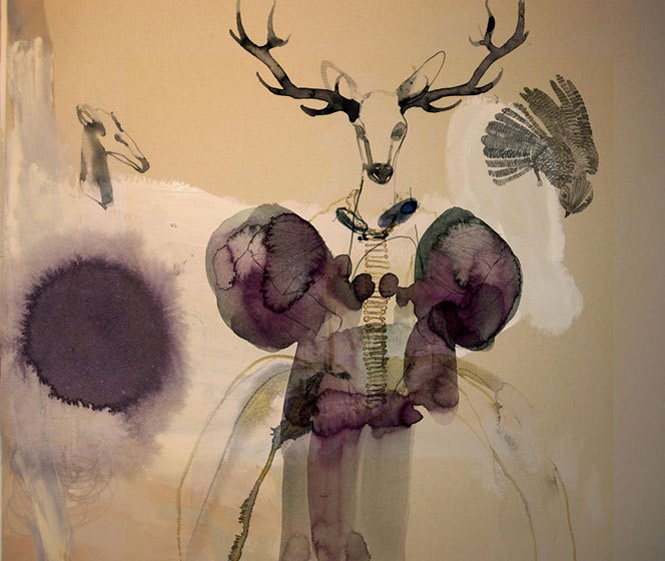 Deer sketch by Daniel Egneus