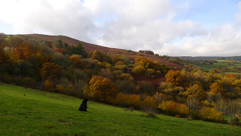 Meldon Hill and the Kestor Valley