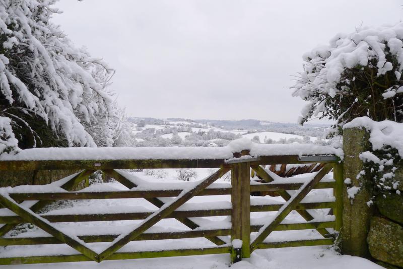 The white Devon hills