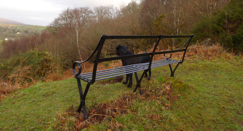 Upper bench, Nattadon Hill