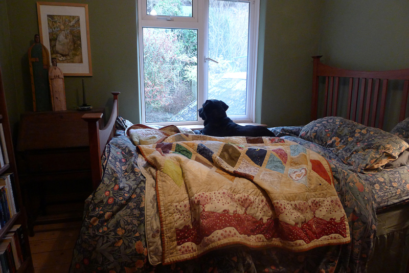 Tilly and the magic quilt