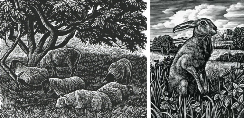 Noonday Shade and March Hare by Howard Phillips
