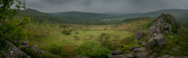 View from Greater Rocks, Hound Tor by Simon Blackbourn