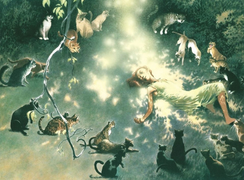 A Circle of Cats by Charles Vess