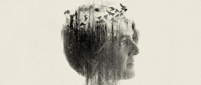 Karin Powlwart by Laurence Winram
