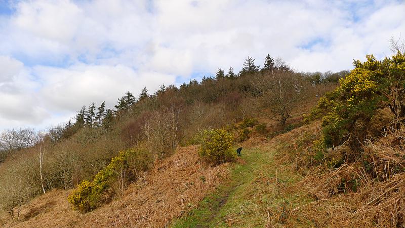 Hill 2
