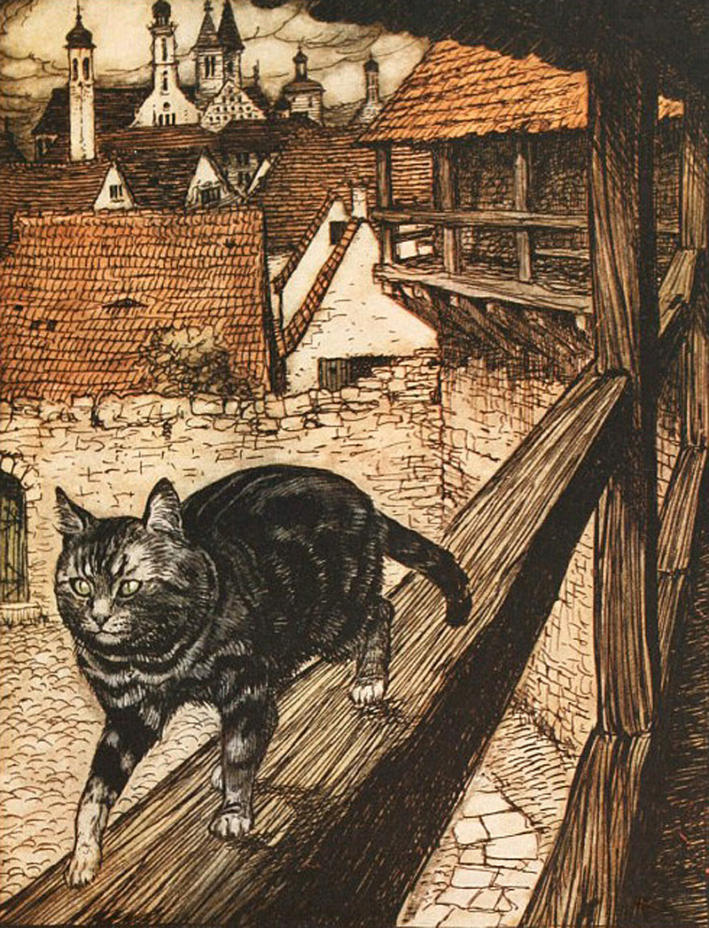 Cat and Mouse in Partnership by Arthur Rackham
