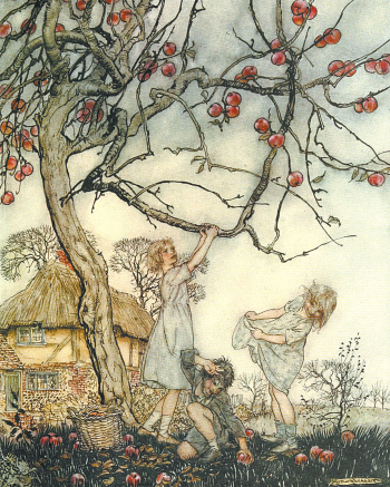 Apple Harvest by Arthur Rackham