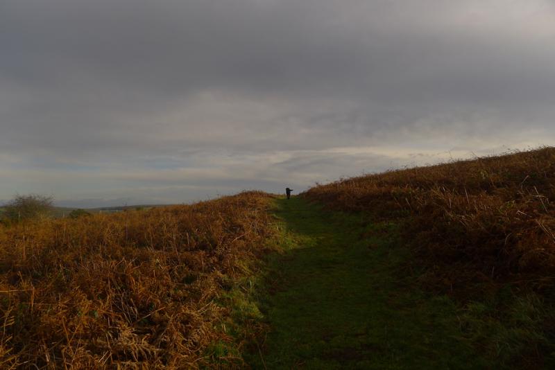 Nattadon Hill 6