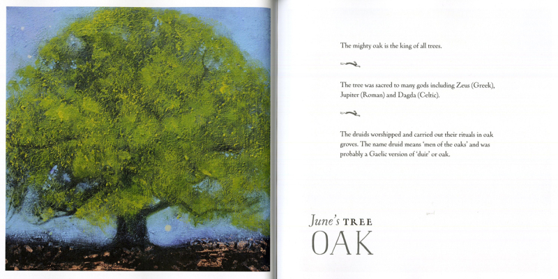 Oak by Catherine Hyde
