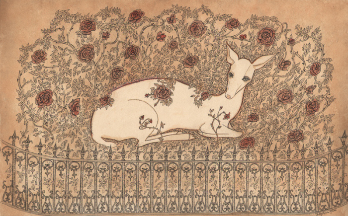 White Fawn by Kelly Louise Judd