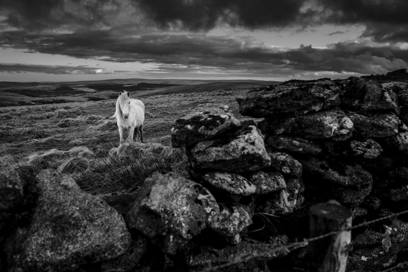 On Sittaford Tor by Simon Blackbourn