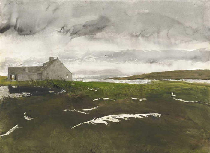 Airborn by Andrew Wyeth