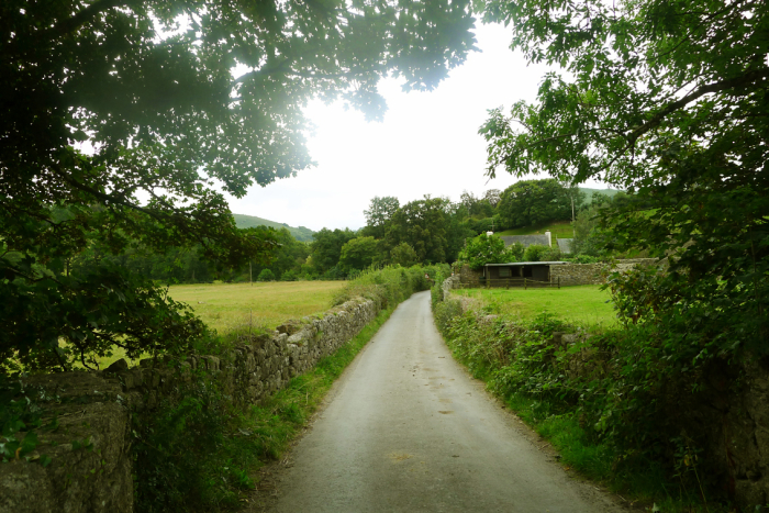 The lane to Chagford