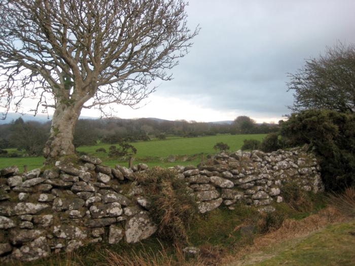 Winter on the edge of Dartmoor