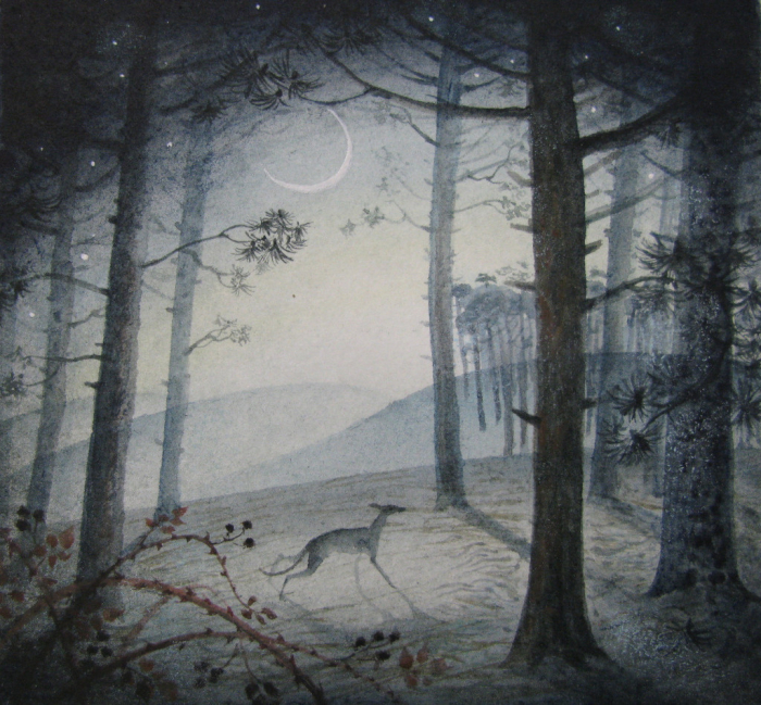 Pine Wood by Flora McLachlan