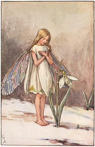The Snowdrop Fairy by Cicely Barker