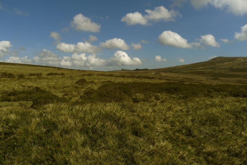 Dartmoor 7