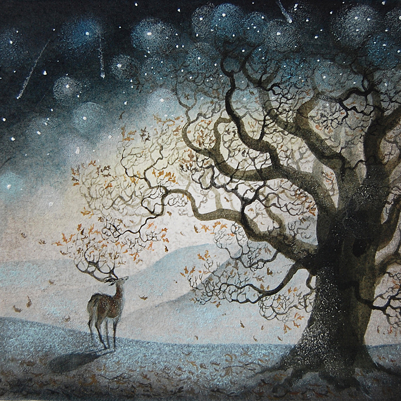 Starfall by Flora McLachlan