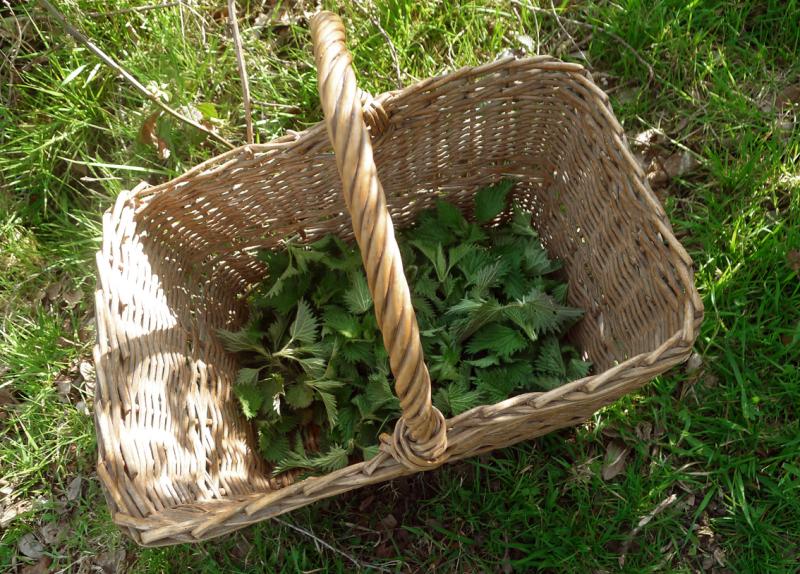 A basket of nettles
