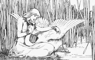 Wild Swans by Helen Stratton