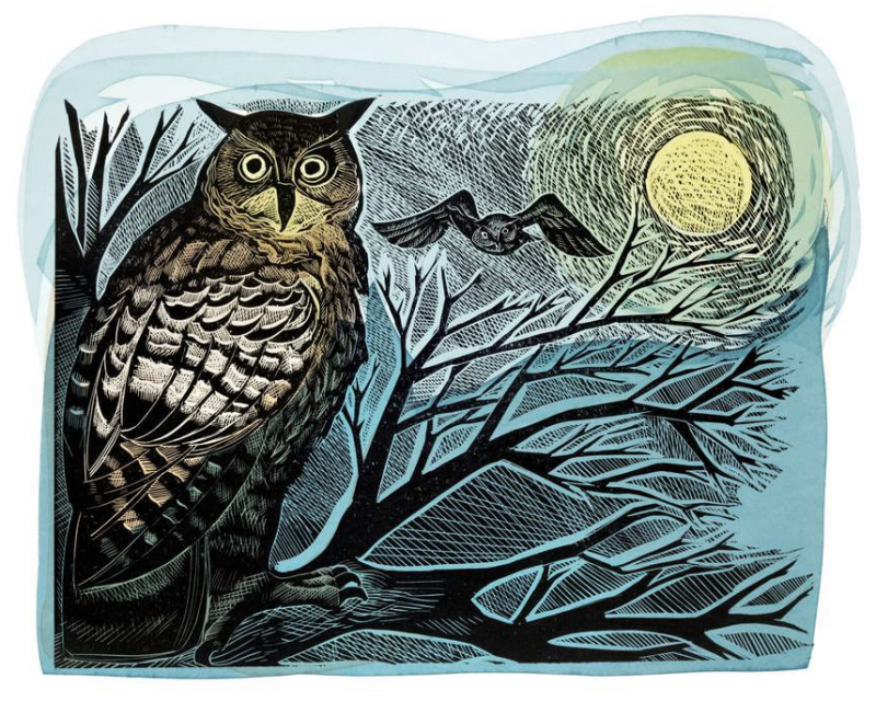 Owl and Moon by Angela Harding