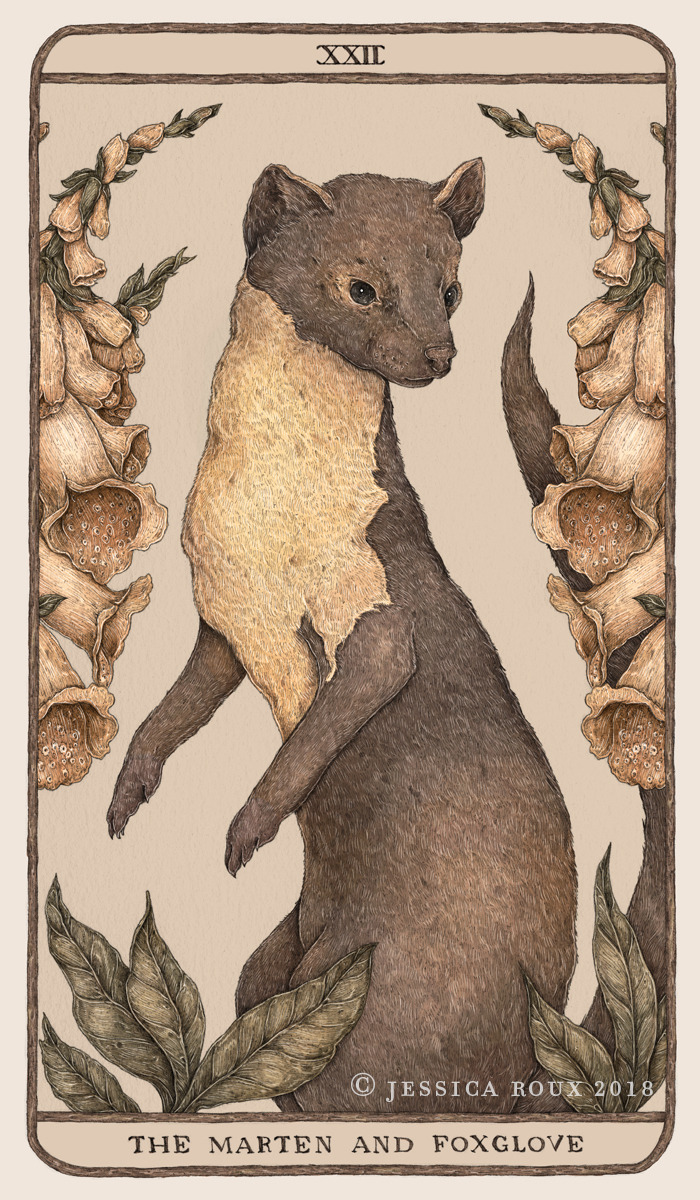 The Marten and the Foxglove by Jessica Roux