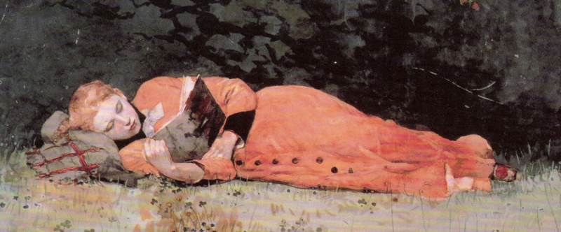 The New Novel by Winslow Homer