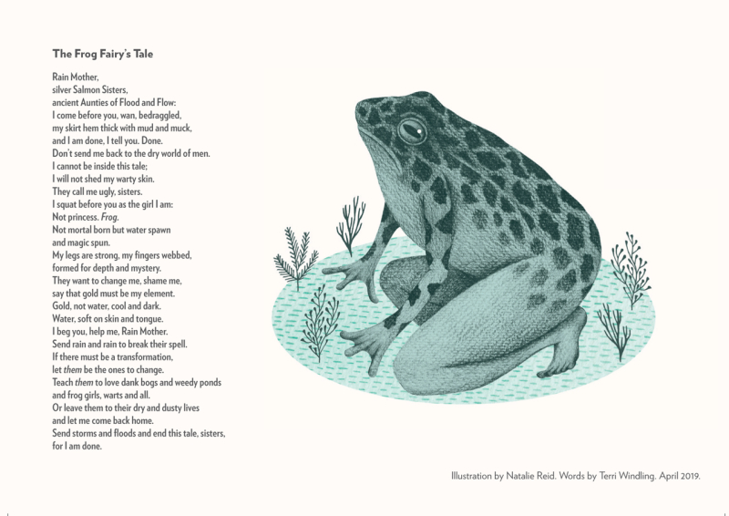 Frog Fairy Terri Windling