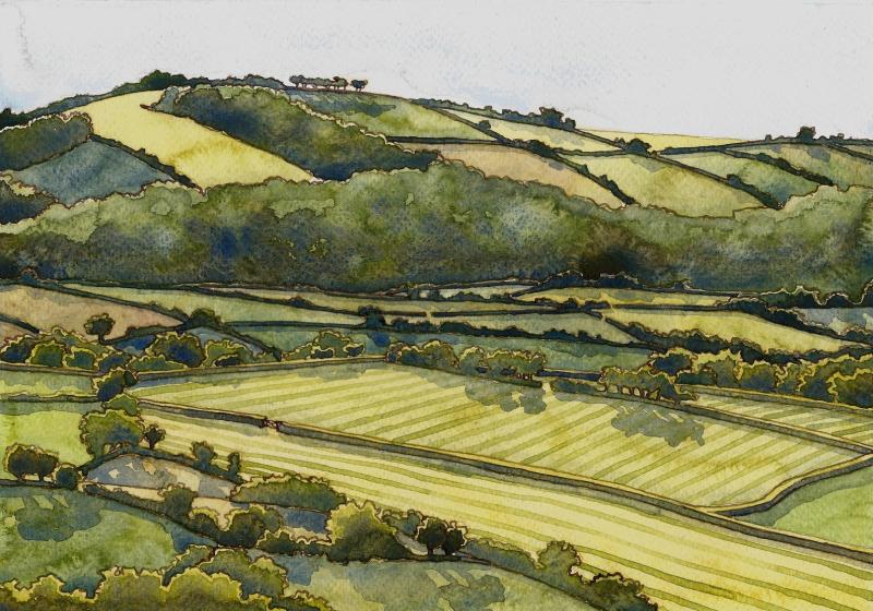 Devon landscape  summer  by Danielle Barlow