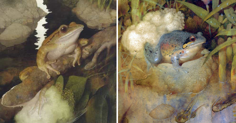 Frog Song by Gennady Spirin