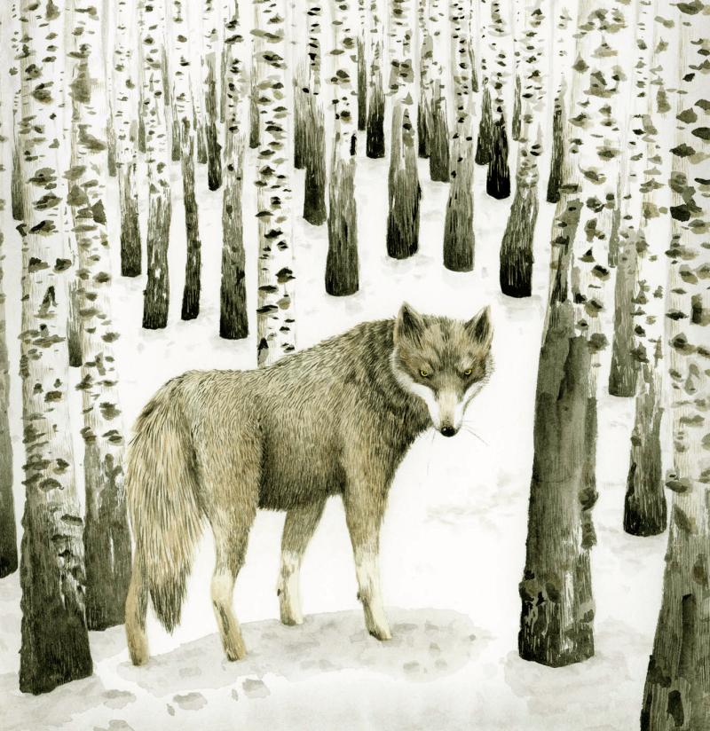 Wolf by Marieke Nelissen