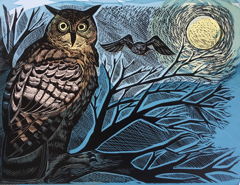 Owls by Angela Harding
