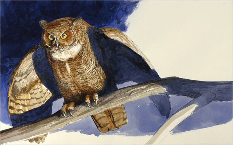 Jane Yolen's Owl Moon, illustrated by John Schoenherr