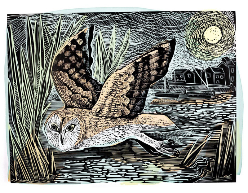 Marsh Owl by Angela Harding