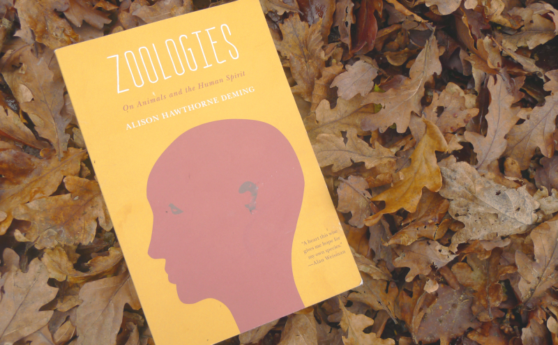 Zoologies by Alison Hawthorne Deming
