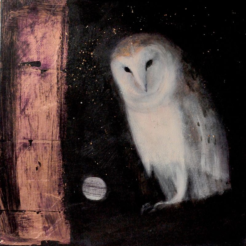 Falling Through Starlight by Catherine Hyde