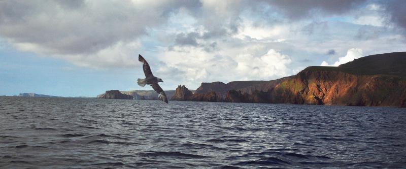 Shetland coast, photograph by David Gange