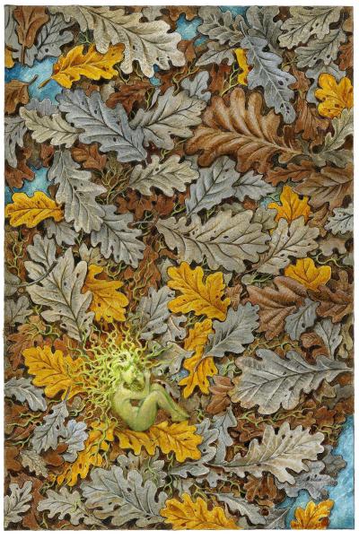 Acorn by David Wyatt
