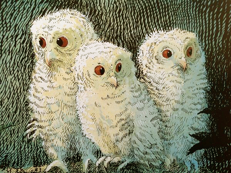 Owl Babies illustrated by Patrick Benson
