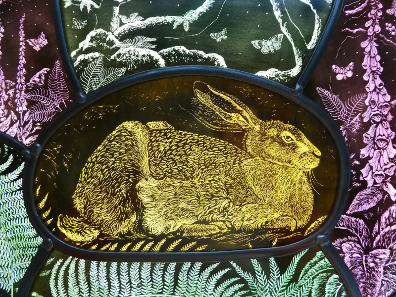 Hare by Tamsin Abbott