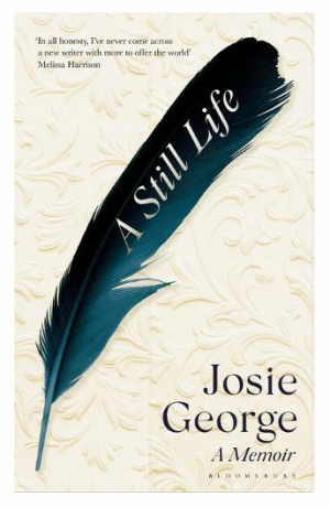 A Sill Life by Josie George