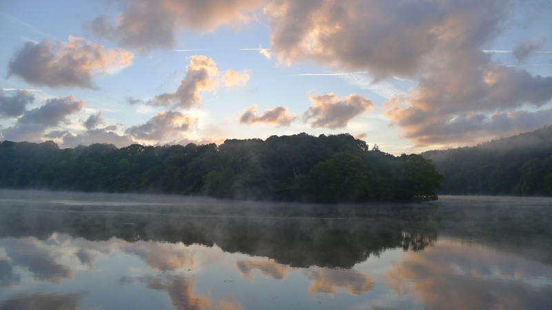 Dawn from window