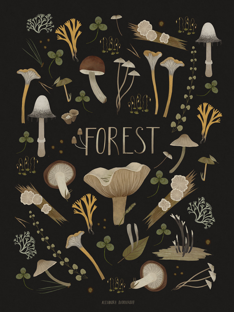 Forest by Alexandra Dvornikova