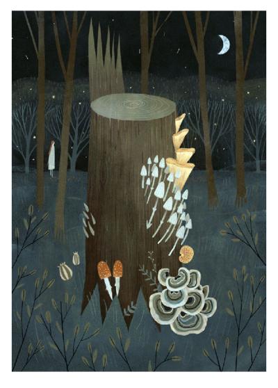 Fungi by Alexandra Dvornikova