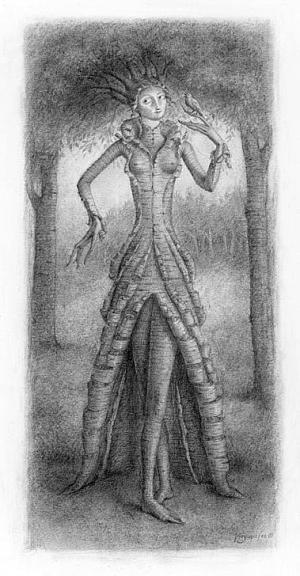 Miss Birch by Virginia Lee