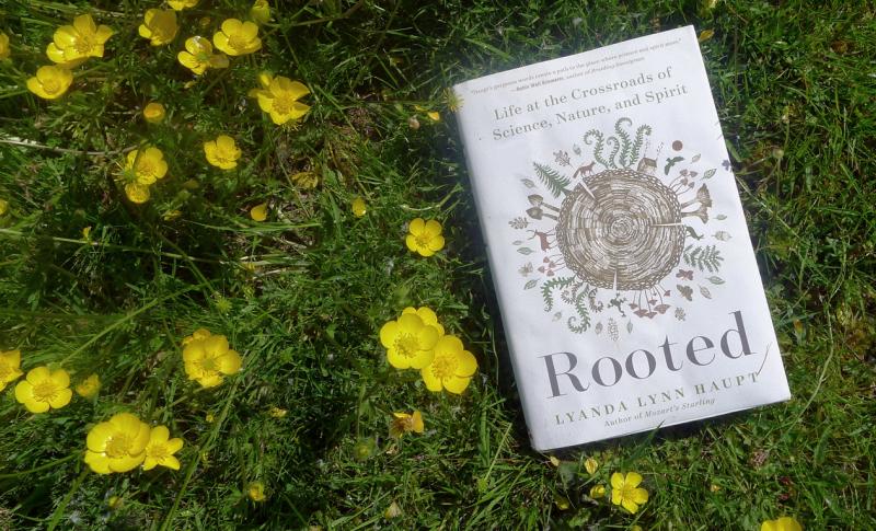 Rooted by Lyanda Lynn Haupt