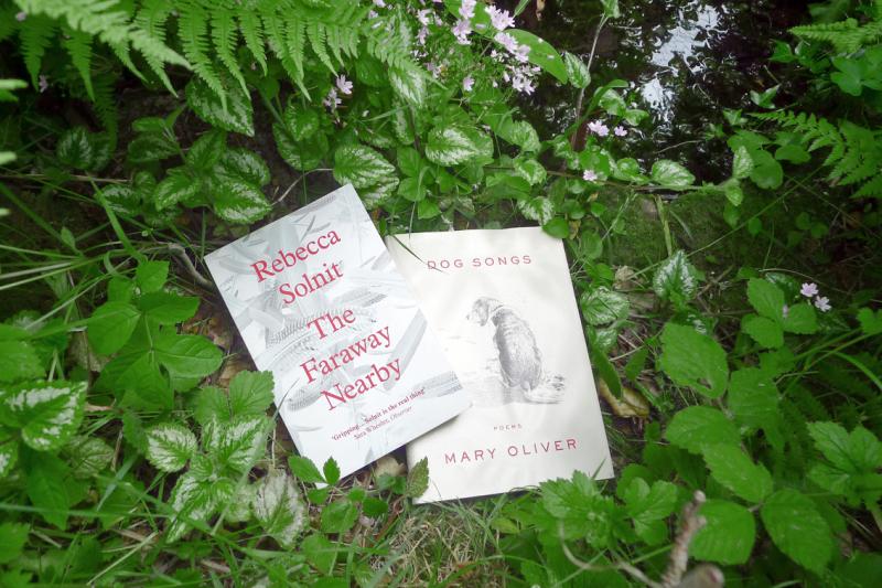 Rebecca Solnit & Mary Oliver
