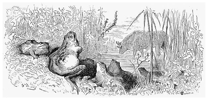 The Frog and the Ox by Gustave Doré