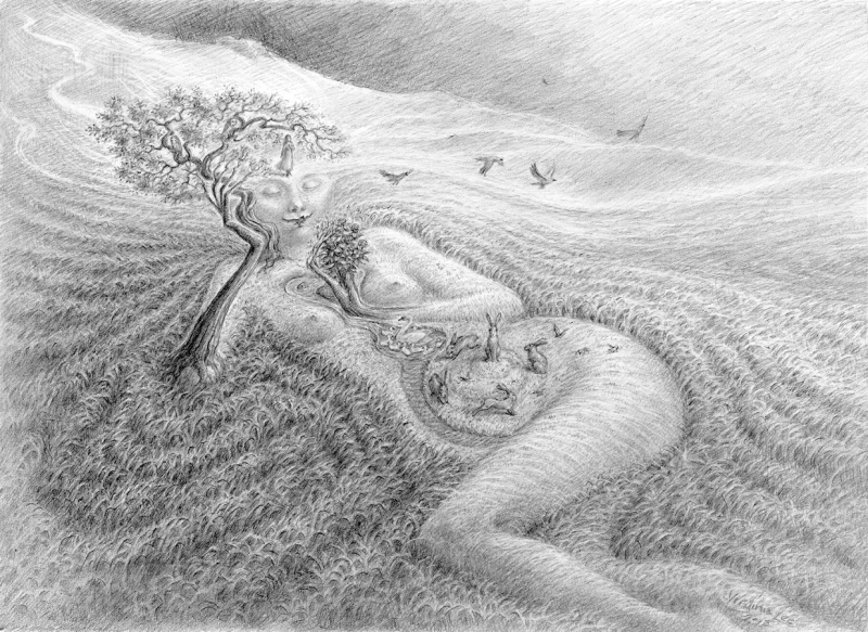 Moor Maiden by Virginia Lee copy
